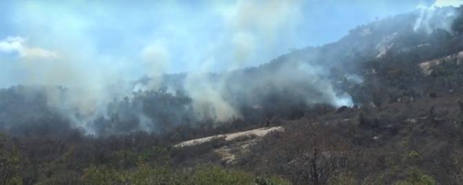 Governo do Estado informa reforço no combate ao incêndio florestal na Serra do Lima, na cidade de Patu
