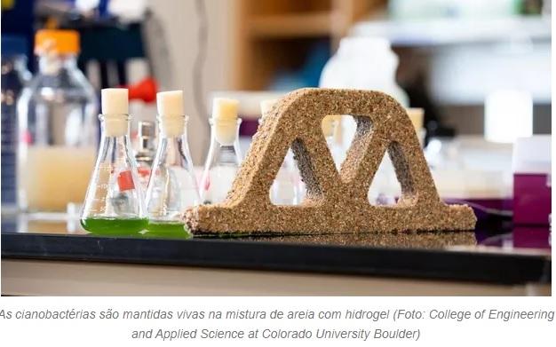 Cientistas criam 'cimento vivo' que se reproduz e limpa o ar
