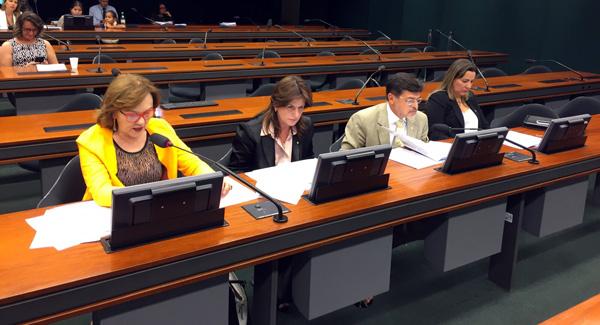 Zenaide Maia na reunião da comissão 2